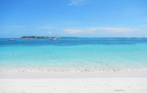 Baignade interdite à Saint-Martin après l'attaque mortelle d'une touriste par un requin