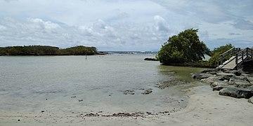L'étang des Salines à Sainte-Anne : une pollution aux pesticides et métaux lourds