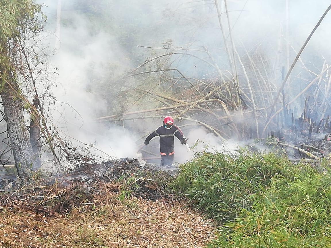 Un radar incendié au Lamentin et un feu de bambous au François