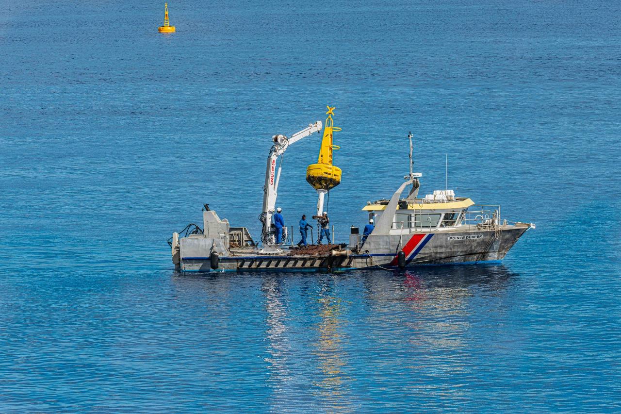 Trois nouvelles bouées protègent les épaves dans la rade de Saint-Pierre