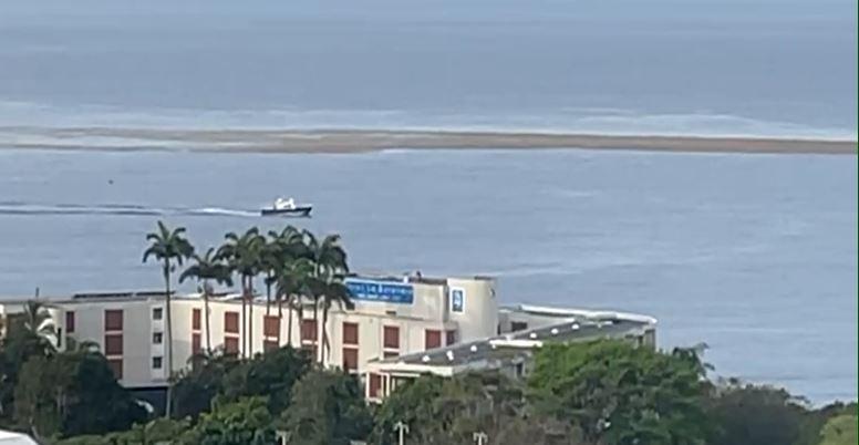 Les sargasses font leur retour sur la côte caraïbe