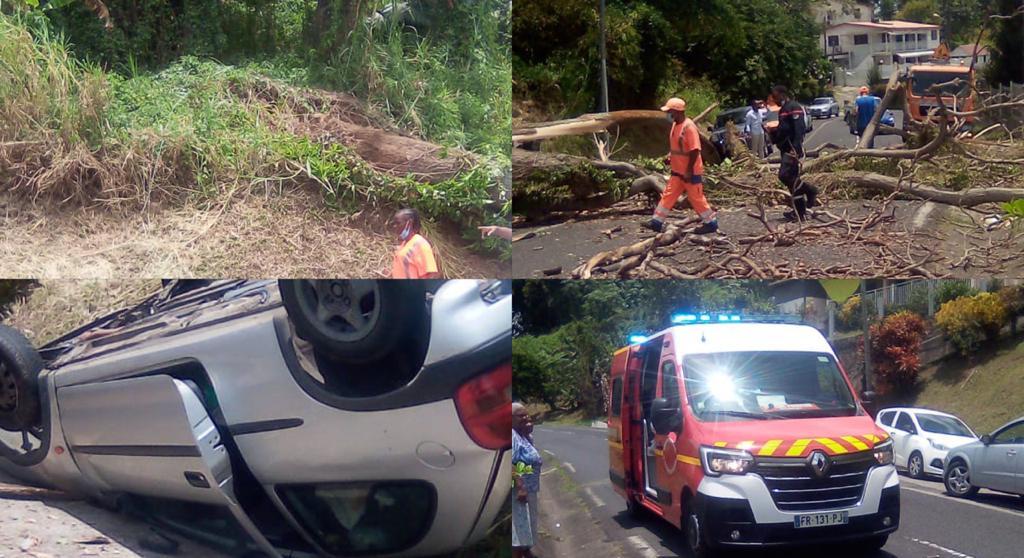 Un arbre tombe sur une voiture sur la route de Morne Pitaut