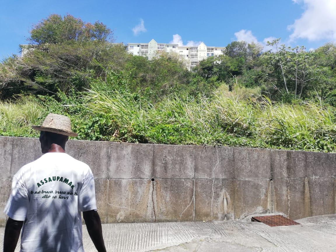 L'Assaupamar monte au créneau contre un projet de construction à Fort-de-France