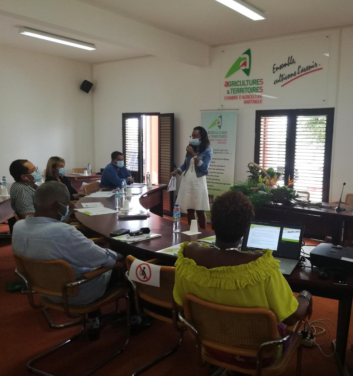 Une centainede projets présentés pour la sécurité alimentaire et la relance agricole en Martinique
