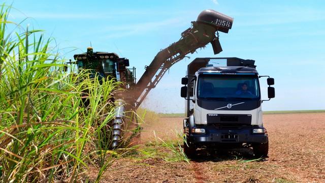 Défilé des camions titans pour la fin de récolte