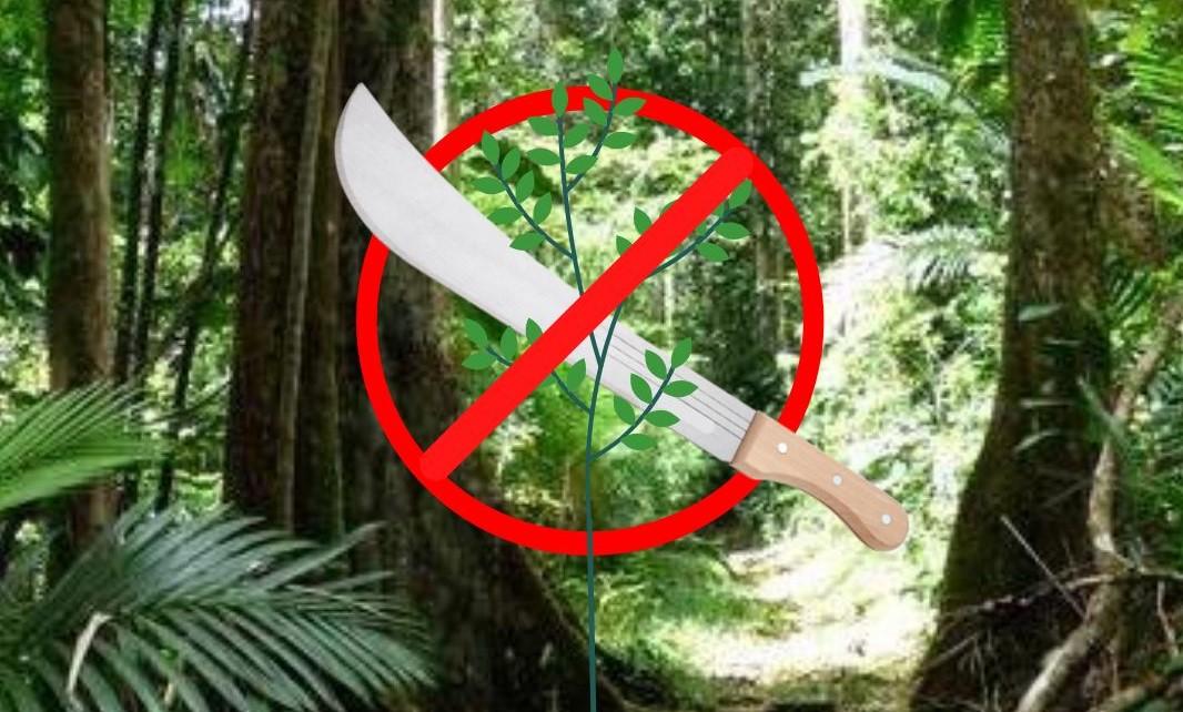 Des prélèvements sauvages au cœur du Parc National