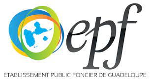 Patrick Sellin élu président de l'EPF