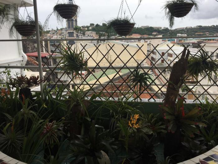 24 jardins et terrasses s'ouvrent au grand public