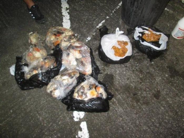 30 kilos de lambis et 11 kilos d'oursins saisis par les gendarmes au Marin