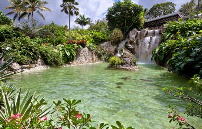 Braquage au jardin botanique : un appel à témoins lancé