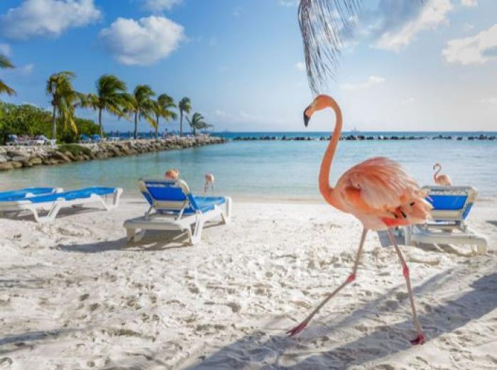 Caraïbes : record battu avec plus de 30 millions de touristes en 2017