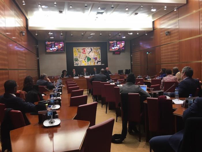 Chlordécone: la délégation Outre-mer de l'Assemblée vote une motion