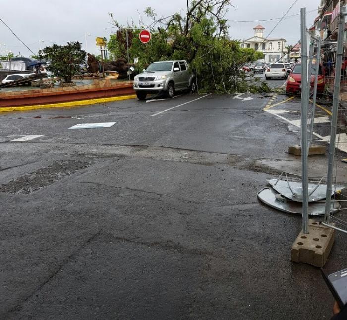 Chutes d'arbres, perturbations du réseau électrique, les effets de la tempête tropicale Matthew