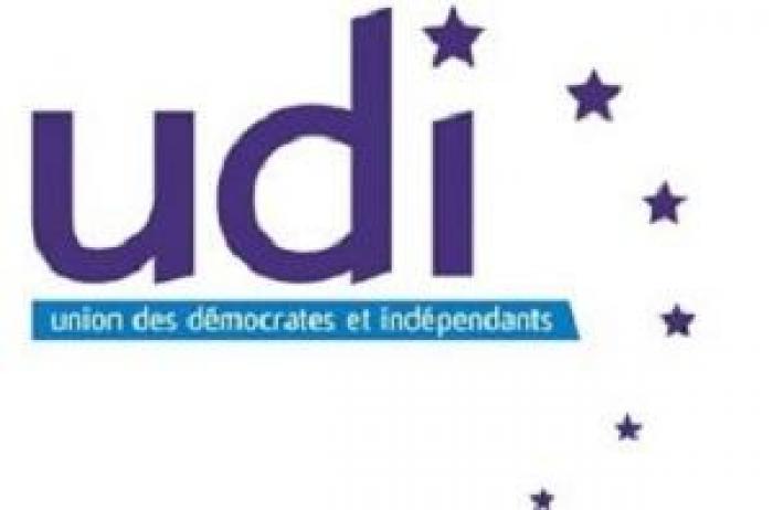 Collectivité unique : l'UDI se positionne
