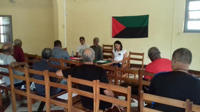 Consultation pour un drapeau et un hymne : les défenseurs du Rouge-Vert-Noir se mobilisent