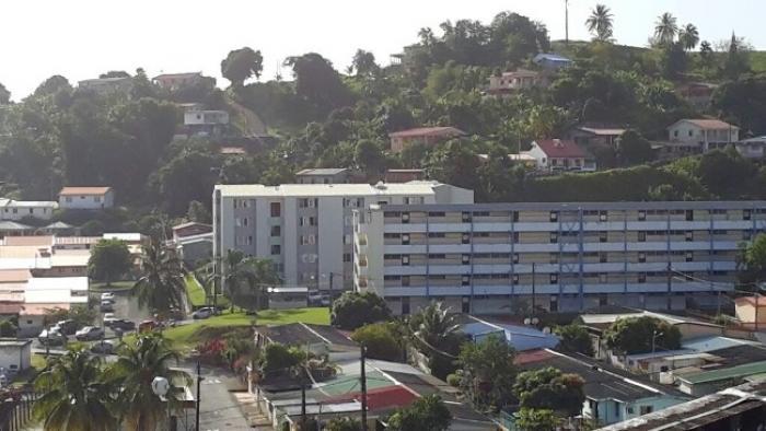 Des appartements envahis par des punaises de lit à Trinité