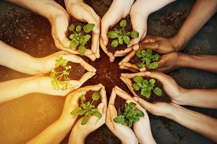 Des jeunes du collège Joseph Pitat sensibilisés à la biodiversité