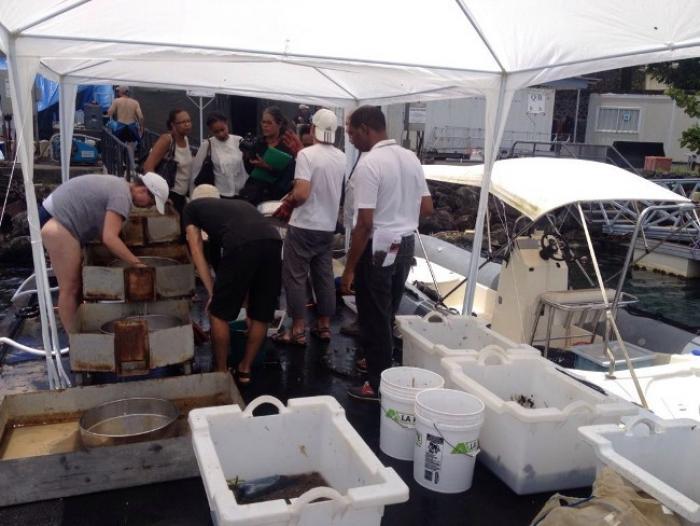 Des scientifiques venus de 13 pays étudient nos fonds marins