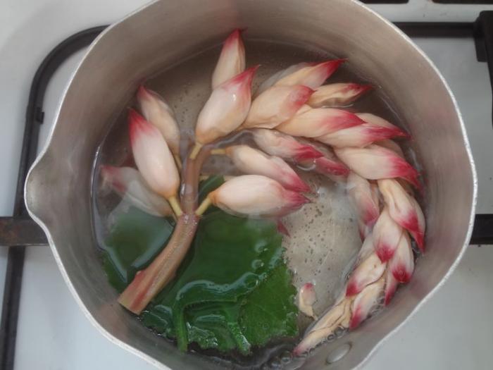 Détox d'après fêtes : les remèdes créoles qui sauvent