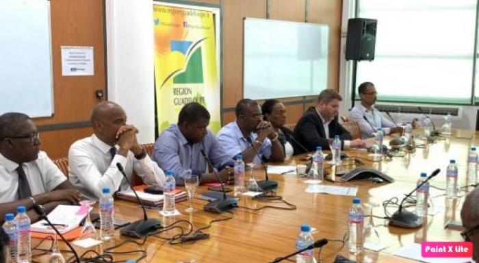 """Elus et syndicats parlent des """"maux"""" de la Guadeloupe"""