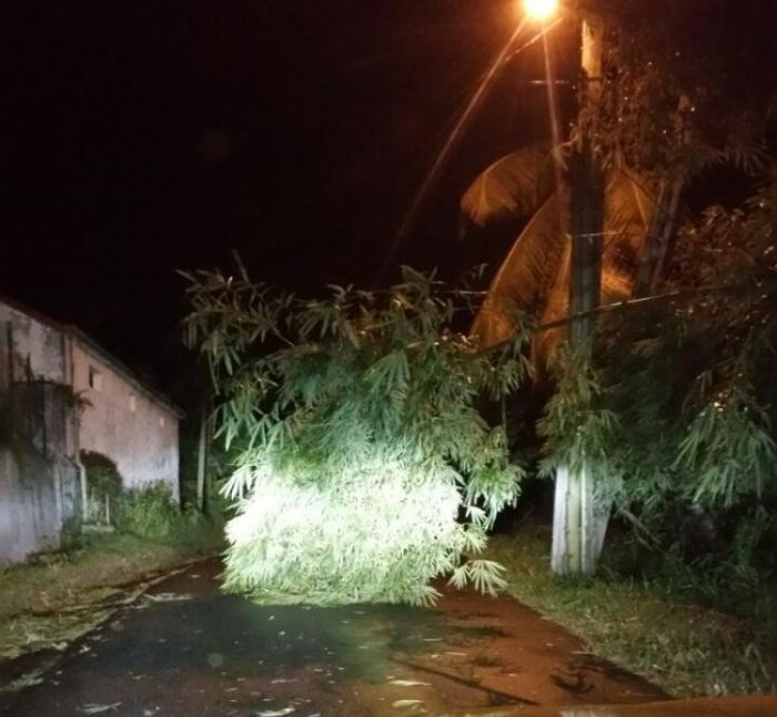 Fermetures et annulations dues aux conditions météorologiques