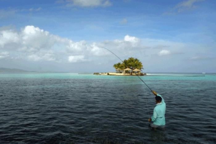 Forum sur la pêche et l'aquaculture : le parc national a fait le point