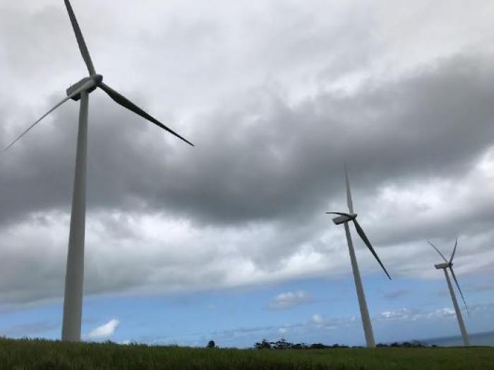 Inauguration officielle du parc éolien hybride de Sainte-Rose