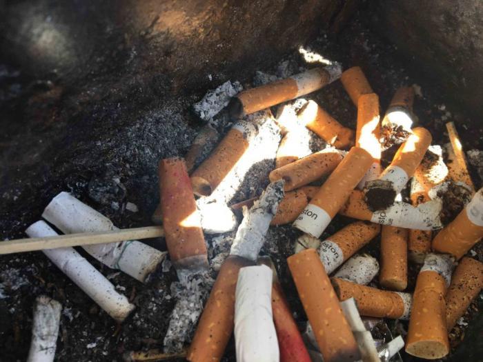 Journée sans tabac : 18 mois après l'arrivée du paquet neutre la consommation reste stable en Martinique