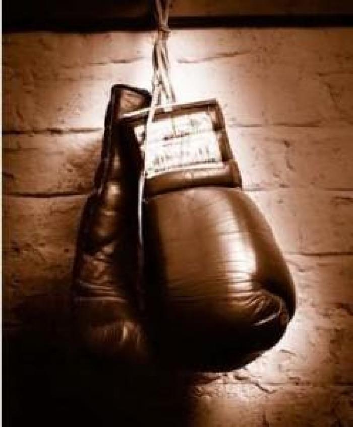 Kickboxing : direction l'Open International pour 5 martiniquais