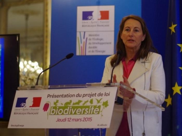 L'Agence Française pour la Biodiversité prend ses marques en Guadeloupe