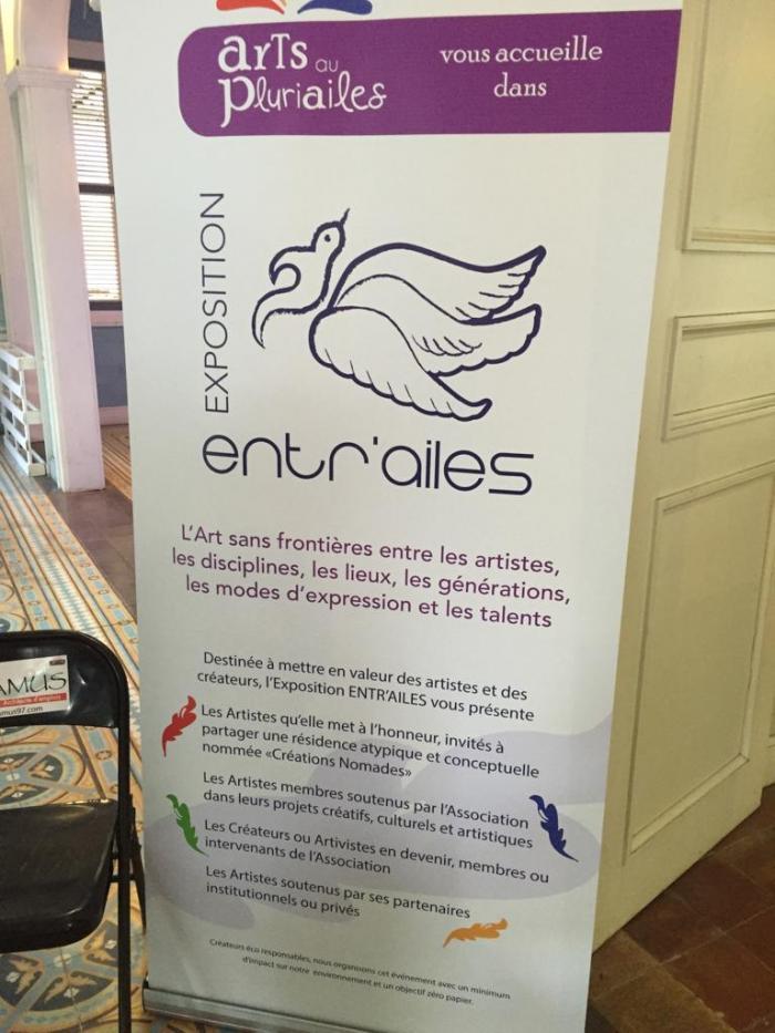 L'art sans frontières: entre opérations artistiques et talents locaux à Pointe-à-Pitre