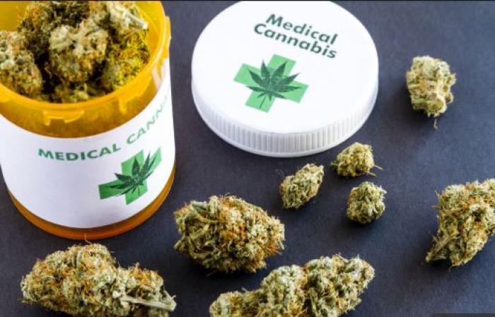 L'usage du cannabis thérapeutique de plus en plus probable en France