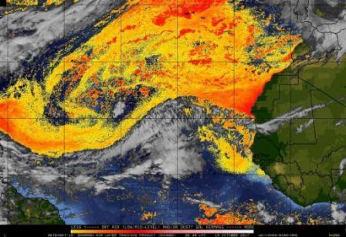 La brume de sable pourrait être à l'origine de la multiplication des naissances prématurées aux Antilles