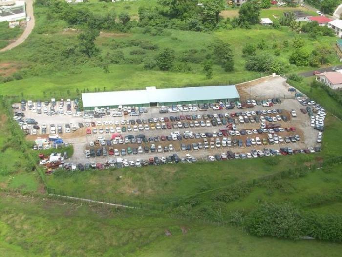 La Martinique n'a plus de service de fourrière depuis 20 mois