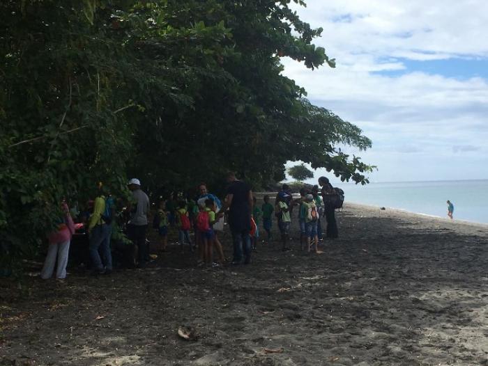 La première aire marine éducative de Martinique