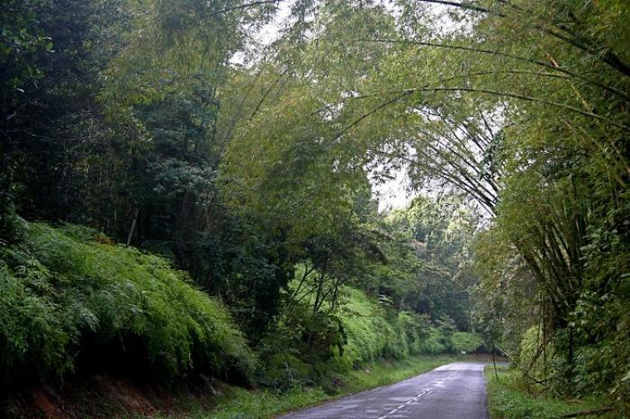 La route des Mamelles est rouverte