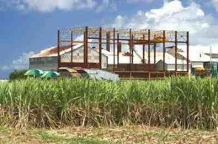 La sucrerie de Grand-Anse prête pour un campagne sucrière courte