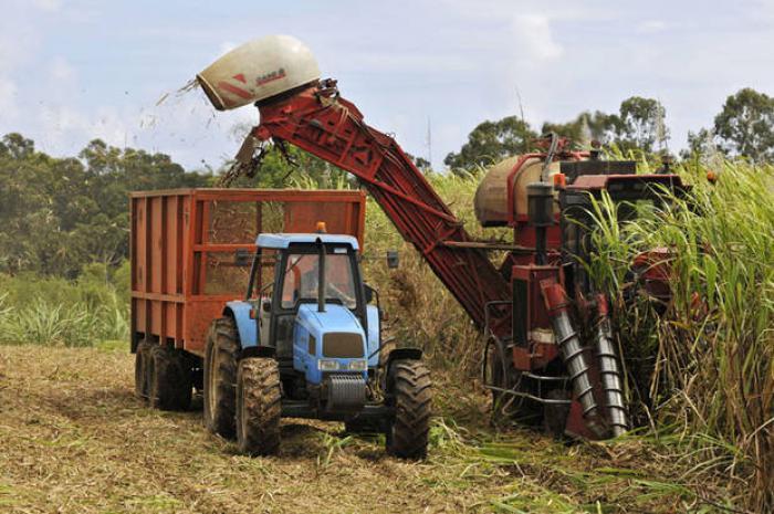 Le Conseil Départemental met à disposition des baux ruraux