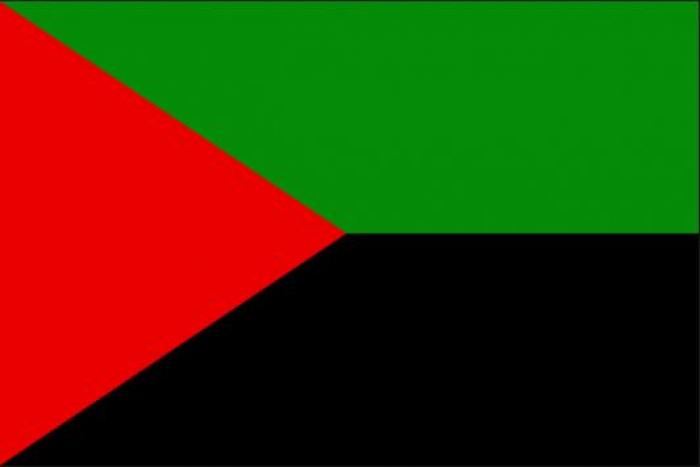 Le drapeau rouge-vert-noir flottera bientôt devant des bâtiments de la ville de Fort-de-France