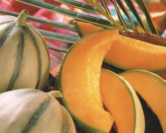 Le melon de Guadeloupe est en mal d'export