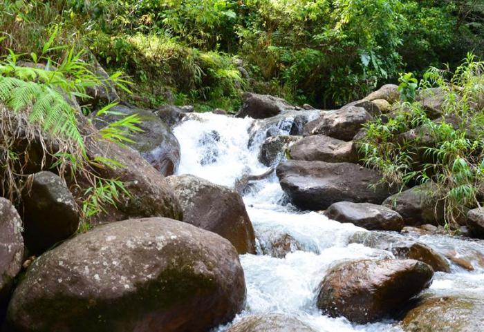 Le Parc National met en garde contre les dangers de la rivière