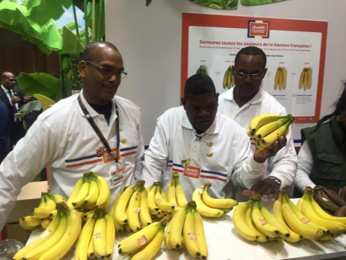 Le prix de la biodiversité remis à des planteurs de banane à Paris