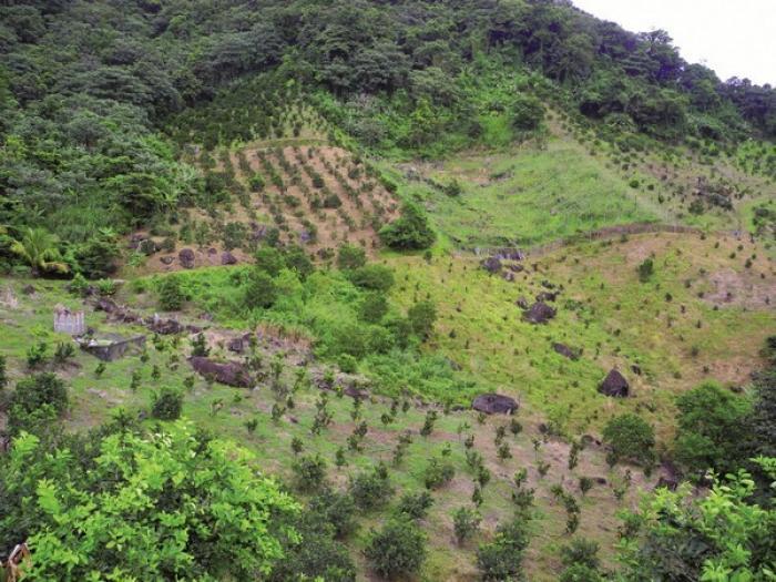 Le préfet soutient la demande de reconnaissance de l'état de calamité agricole