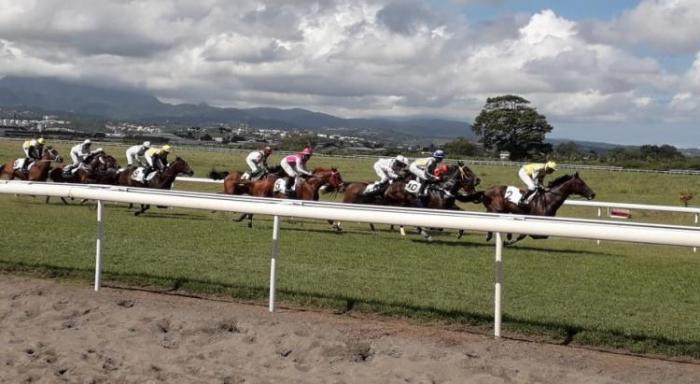 Les courses de chevaux de la Martinique plus retransmises sur la chaîne nationale Equidia