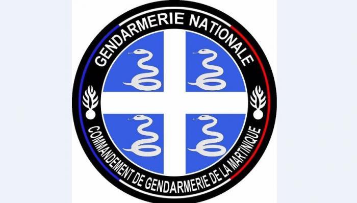 Les gendarmes (comme les pompiers) doivent abandonner l'écusson aux quatre serpents
