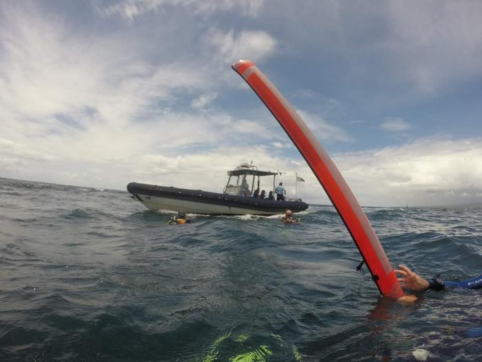 Les gendarmes portent secours au monde aquatique