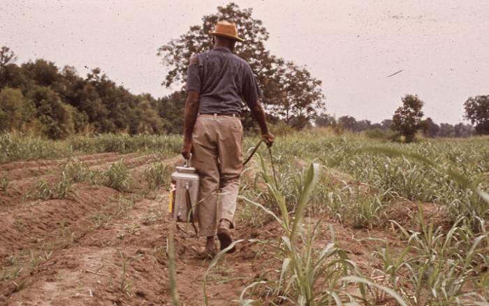 Les pesticides interdits à la vente aux particuliers à partir du 1er janvier