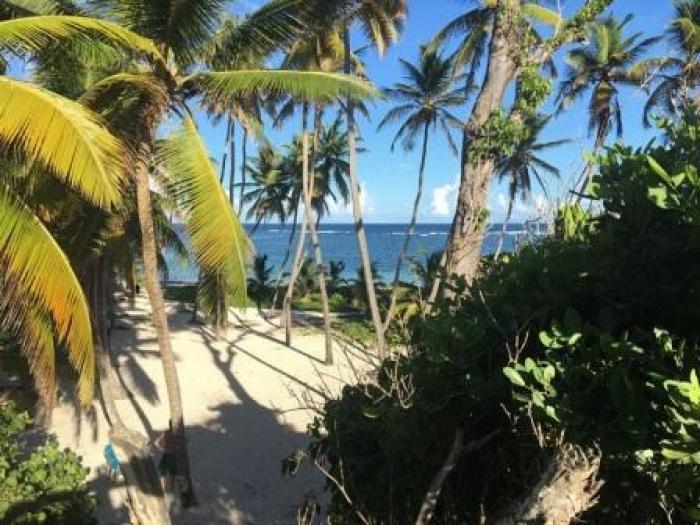 Les plages du Cap Chevalier à nouveau accessibles au public