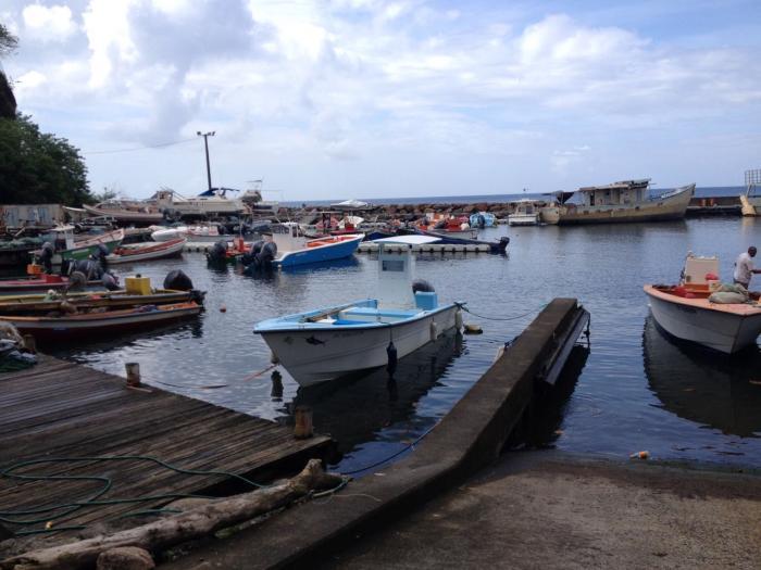 Les pêcheurs du nord caraïbe sont sereins à l'approche de la houle