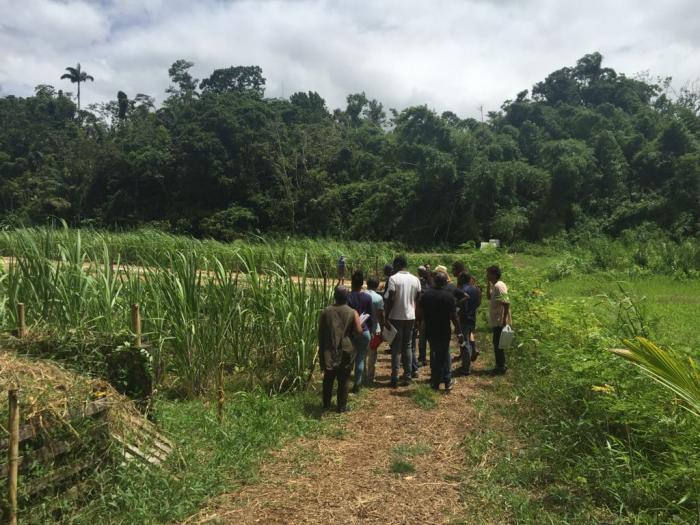 Les recherches de l'INRA accessibles à la profession agricole